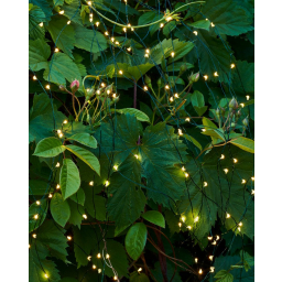 Svítící řetěz Fairy Light 200 LED Green